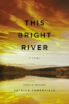 This Bright River – Patrick Somerville