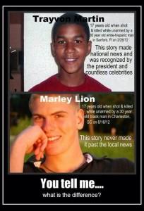 Trayvon Martin Marley Lion
