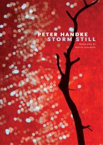 Handke Storm Still
