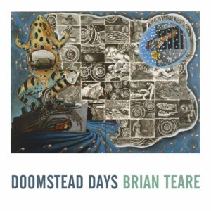 Brian Teare cover